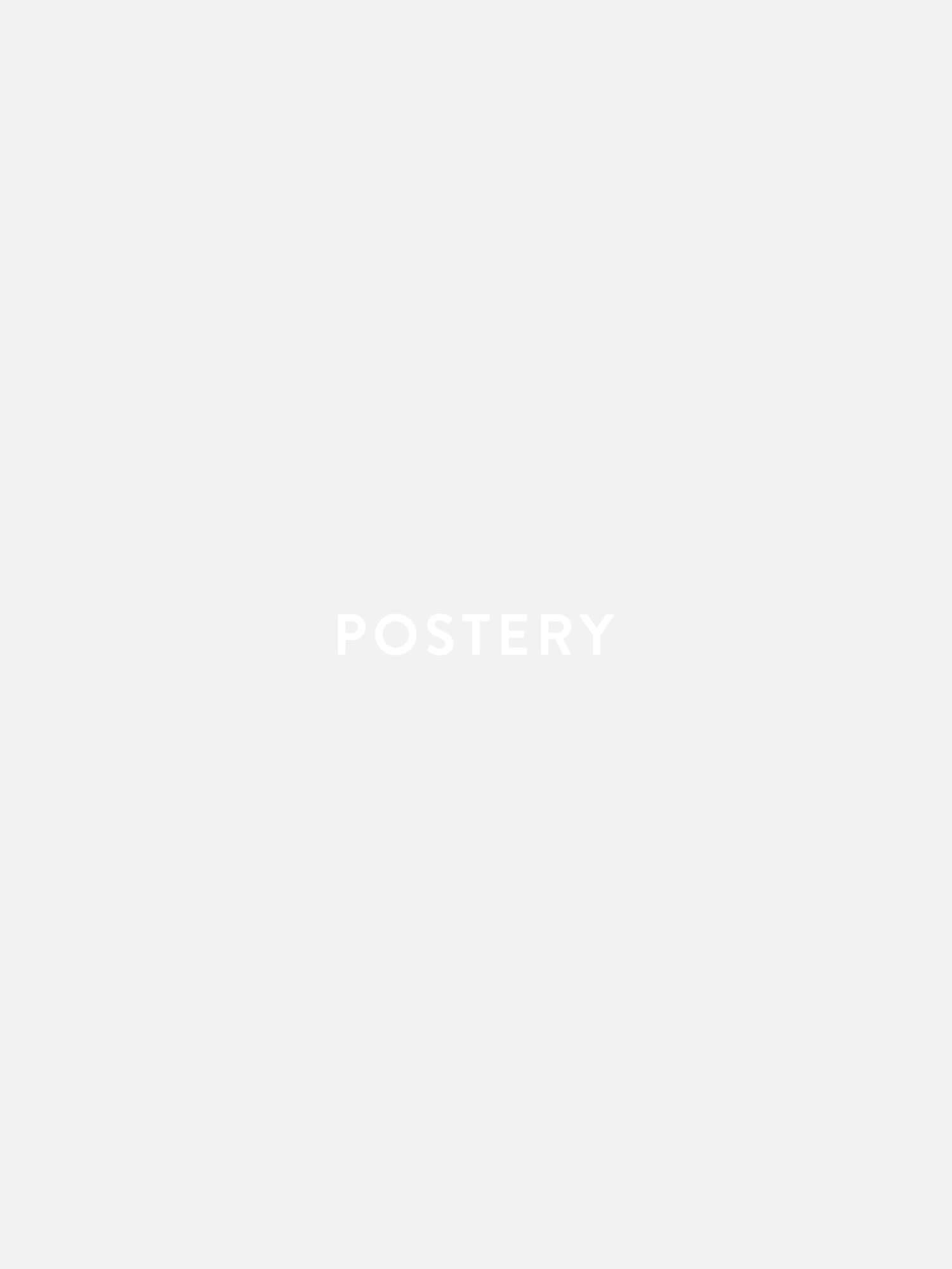 White Pattern Leaf Poster